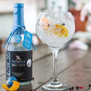 targuins-dry-gin-logo