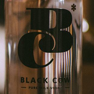 black-cow-vodka-logo